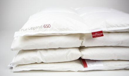 "Одеяло ""True Legend 650 medium"""