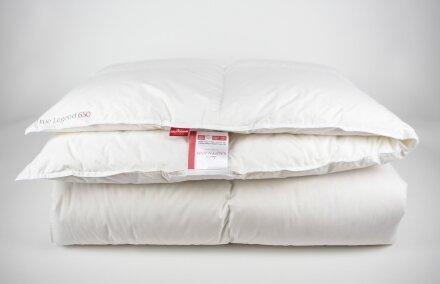 """Одеяло """"True Legend 650 warm"""""""